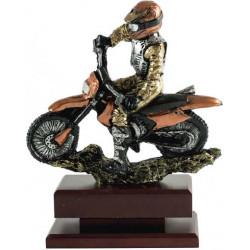 Trofeo Moto 2