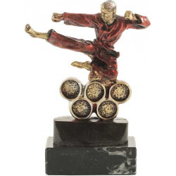 Trofeo Karate 1